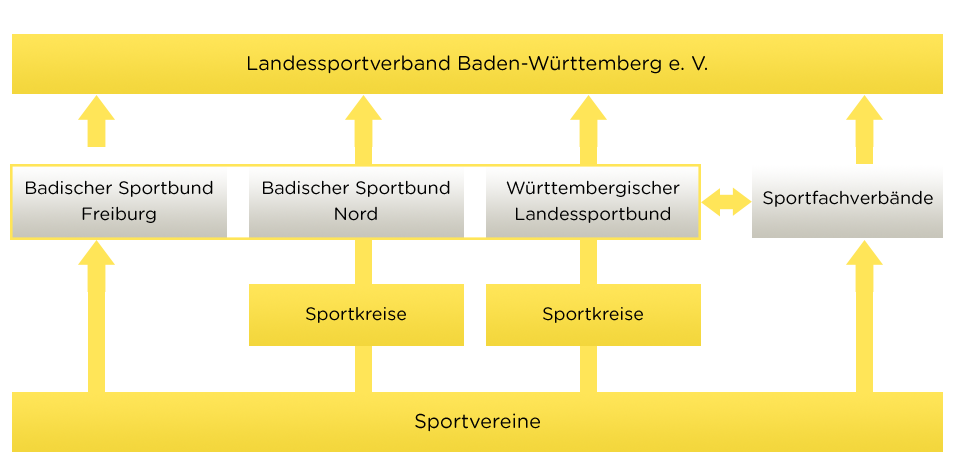 Abbildung der Struktur des Landessportverbandes