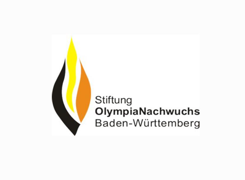 Baden wurttemberg stiftung